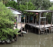 Cedar Key FL Photos IMG_4827