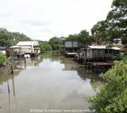 Cedar Key FL Photos IMG_4831