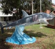 Cedar Key FL Photos IMG_4834