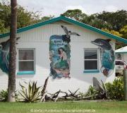 Cedar Key FL Photos IMG_4837