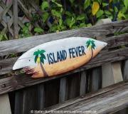 Cedar Key FL Photos IMG_4863