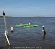 Kanus / Kajaks  im Golf von Mexiko von Cedar Key in Florida.