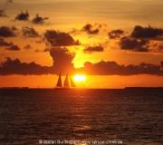 Key West Florida IMG_4726