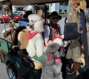 Spruce-Creek-Toyparade-2015- IMG_1195