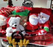 Spruce Creek Toyparade 2016 IMG_7948
