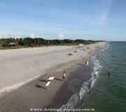 Strand am Golf von Mexiko im Stadtgebiet von Venice in Florida, nahe der Pier.