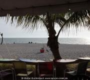 Blick vom Sharky's Restaurant in Venice in Richtung Strand vom Golf von Mexiko.