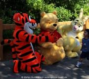 Disney World Florida IMG_5178