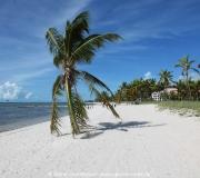 Key West Florida IMG_4518