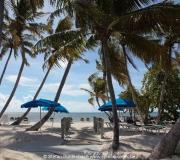 Key West Florida IMG_4537