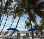 Key West Florida IMG_4538