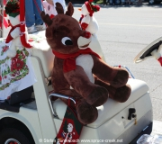 Spruce-Creek-Toyparade-2015- IMG_1119