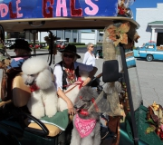 Spruce-Creek-Toyparade-2015- IMG_1198