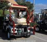 Spruce-Creek-Toyparade-2015- IMG_1711