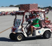 Spruce-Creek-Toyparade-2015- IMG_1478