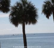 St Petersburg Florida IMG_9003