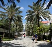 St Petersburg Florida IMG_9036