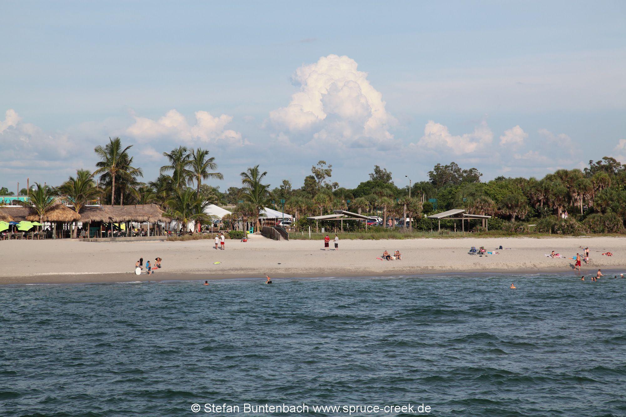 Strandabschnitt am Golf von Mexiko im Bereich von Venice, Florida, südlich von Sarasota.